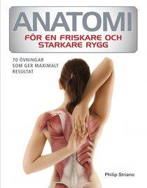 Anatomi för en friskare och starkare rygg
